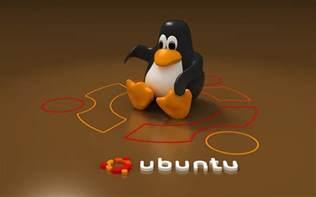 ubuntu l installieren ubuntu exp 233 riences it