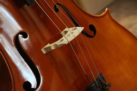 Jargar Cello G String primavera 200 cello 4 4 plus jargar strings cello reidys