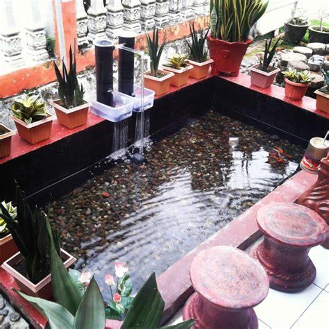desain kolam ikan minimalis  lahan sempit terbaru