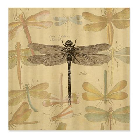 dragonfly shower curtains dragonfly vintage shower curtain on