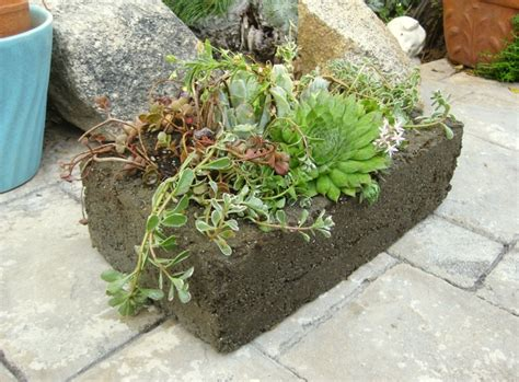 Make Your Own Concrete Planters by Make Your Own Concrete Planters Flea Market Gardening