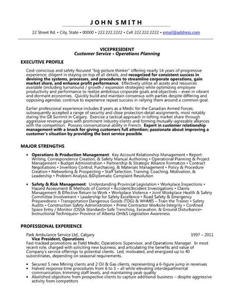 Resume Vice President Customer Service Click Here To This Vice President Resume Template Http Www Resumetemplates101