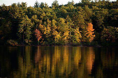 walden pond pdf henry david thoreau concord massachusetts