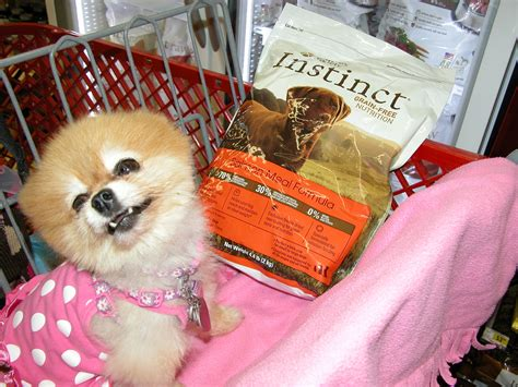 pomeranian dogs food comparison shops for foods petmeds