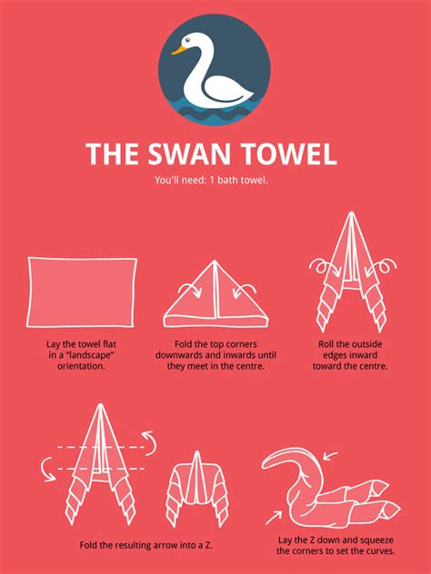 towel animal folding infographic ultimate guide  create