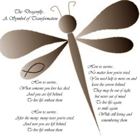 meaning of dragonfly tattoo 25 best ideas about dragonfly meaning on