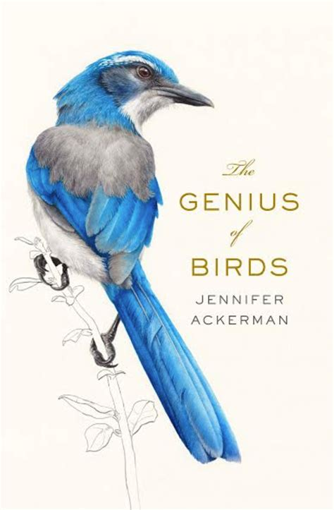 how intelligent are birds two books tackle the subject