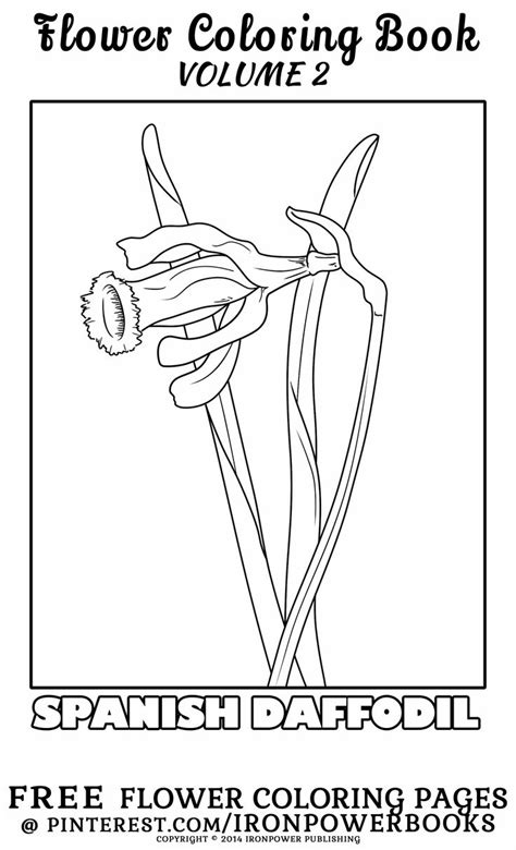coloring pages free for commercial use 17 best images about free flower coloring pages on