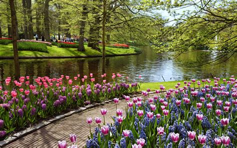 Beautiful Spring by Beautiful Spring View Hd Backgrounds Wallpaperscharlie