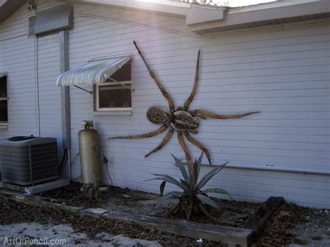 huge spider on side of house fake photo alert giant spider on the side of a house