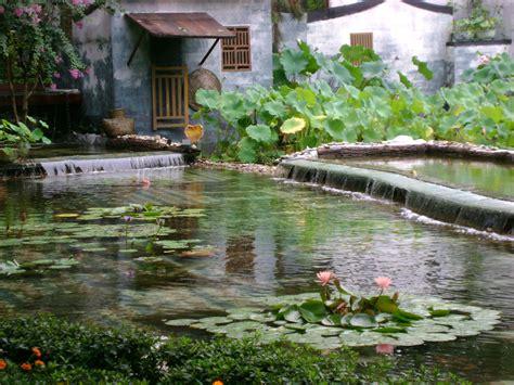 giardino cinese giardino cinese nobili premio celeste 2011