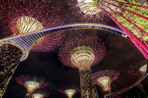 singapore trees of light singapore gardens by the bay marina bay land of the