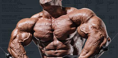 scheda di alimentazione per aumentare la massa muscolare scheda di quattro giorni per massa muscolare