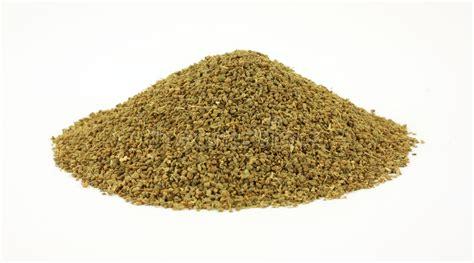 semi di sedano seme di sedano di vista frontale immagine stock immagine