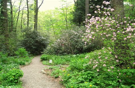 framingham garden in the woods