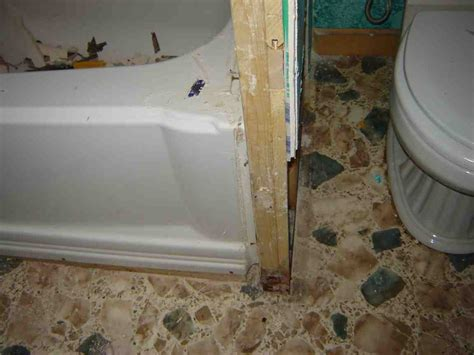 bathroom wall mold removal mold on bathroom walls ideas and framing of wall picture