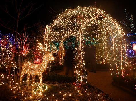 Botanical Garden Of Lights Panoramio Photo Of Festival Of Lights At Dusen