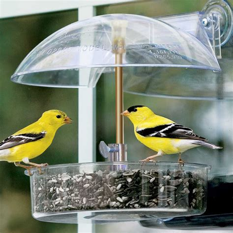 Outside Bird Feeders Winner Window Bird Feeder Contemporary Bird Feeders