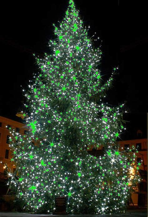 christmas tree projector 100 shipping blisslights ls 20g outdoor laser projector rental let there be light