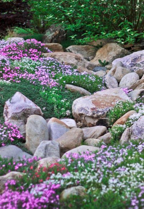 How To Rock Garden 20 Beautiful Rock Garden Design Ideas Shelterness