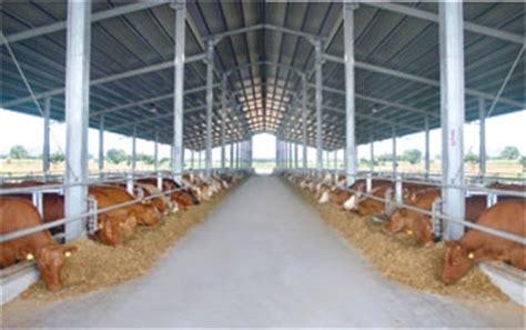 alimentazione bovini da carne bovini e bufalini da carne attrezzature rota guido