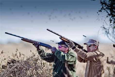 the hunting of the argentina dove hunting guided dove hunting in argentina