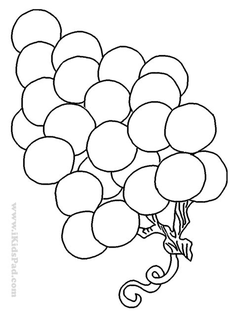 preschool grapes coloring page grapes coloring page coloring home