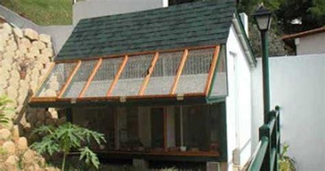 membuat rumah burung merpati contoh kandang merpati umbaran