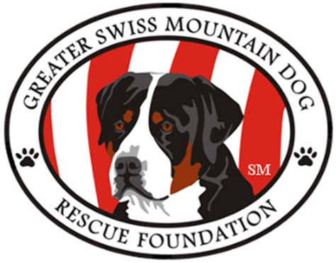 greater swiss mountain rescue greater swiss mountain rescue foundation home
