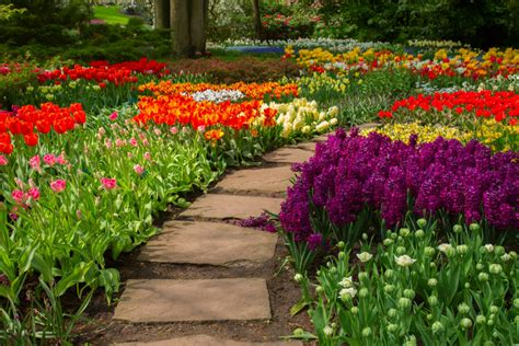 spring landscaping landscaping companies maple grove advanced irrigation inc