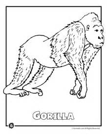 Coloring pages of rainforest animals az coloring pages