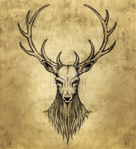 Stag Head Designs by Oh My Deer By Anakarniolska On Deviantart