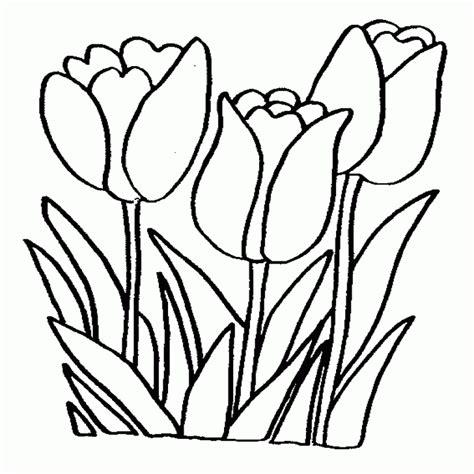 imagenes infantiles para colorear de flores dibujos de flores para colorear colorear website