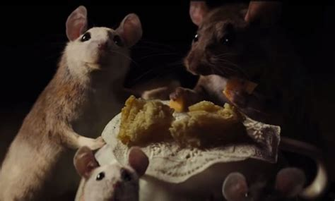 cinderella s mice do talk they re squeaks are speeded up
