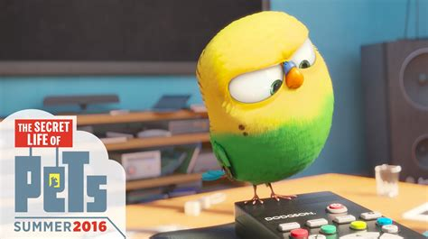 Eric Stonestreet by The Secret Life Of Pets Meet Sweet Pea Hd