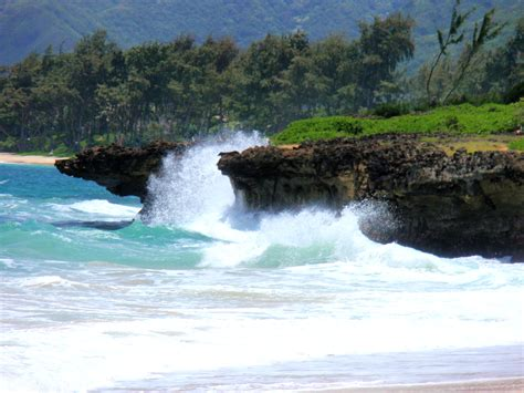 Landscape Hawaii Ca Survival Hawaii Landscape 4