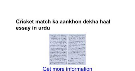 A Cricket Match Essay In by Cricket Match Ka Aankhon Dekha Haal Essay In Urdu Docs