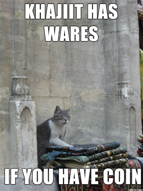 Khajiit Meme - meanwhile in elsweyr khajiit khajiit has wares know