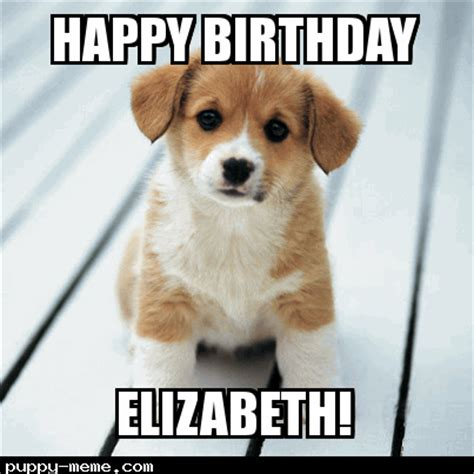 Puppy Birthday Meme - birthday