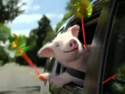 House Whee Whee this piggy cried quot whee quot all the way home