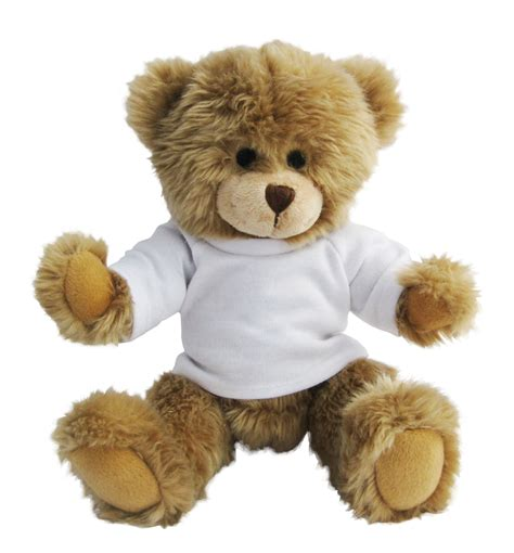 personalised teddy bears personalised bears from school