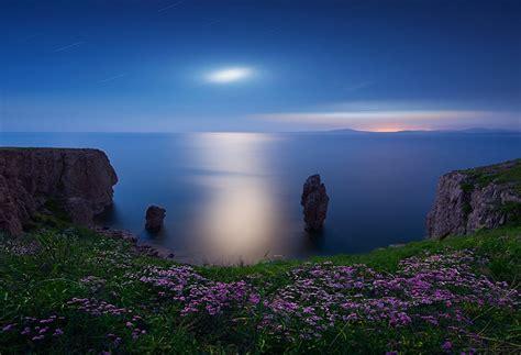 landscape nature moon wildflowers cliff sea rock