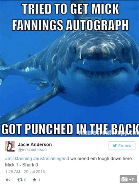 shark meme the 18 best mick fanning shark memes all in one place