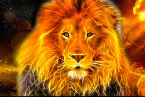 3d Home Decor Download Fire Lion Hd Wallpaper Gallery