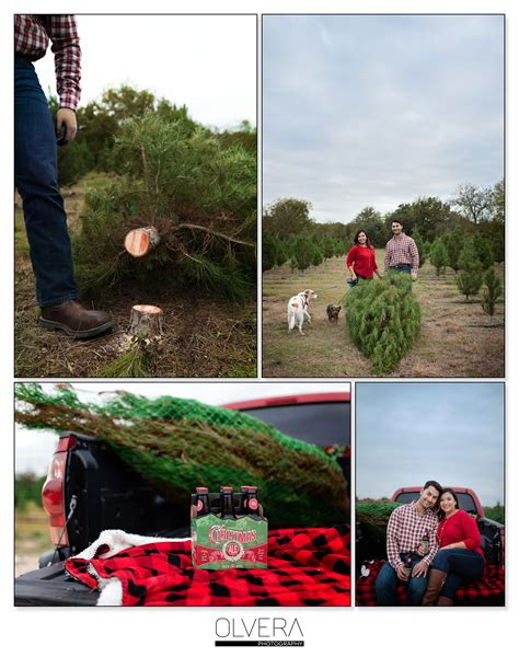 best 28 christmas tree farm san antonio couples