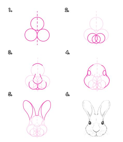 let s draw bunnies 35 step by step bunny drawings books how to draw animals hares and rabbits