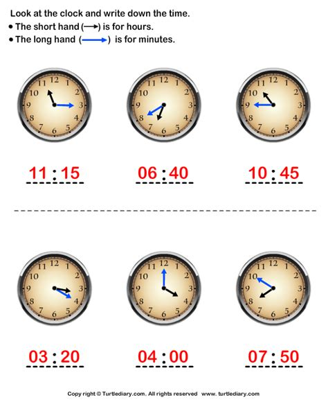 clock worksheets nearest 5 minutes read time to nearest five minutes worksheet turtle diary