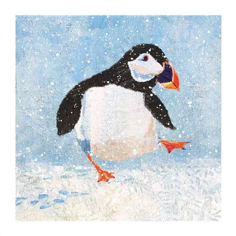 puffin  ice christmas cards  pack rspb shop