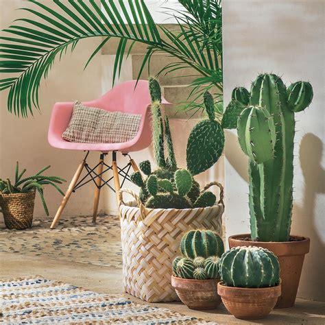 tendance decoration le cactus dans tous ses etats