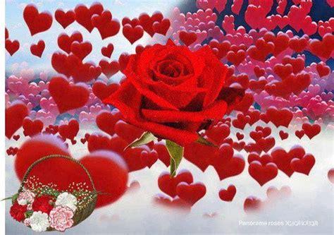 imagenes de zuricatas con corazones plaquetas y salud familiar imagenes de corazones hermosos